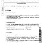 BASES DEL CONCURSO DE CARROZAS Y COMPARSAS SAN MATEO 2018