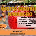 VIAJE A MADRID NAVIDEÑO 2018